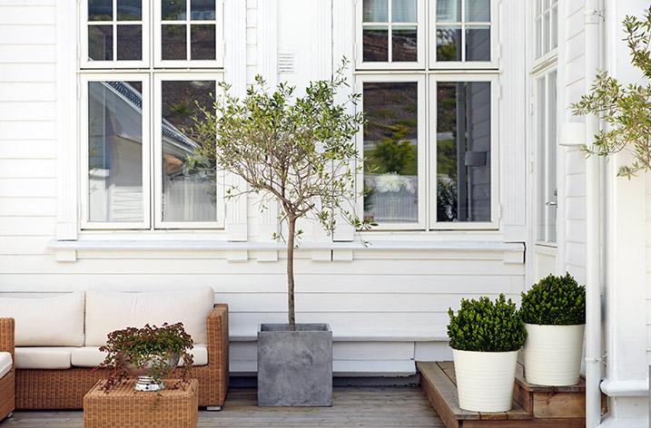 Male huset hvitt? Dette bør du tenke på!