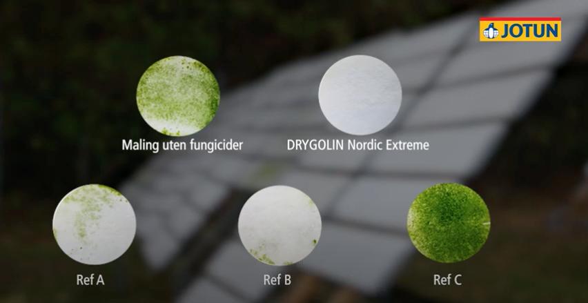 esting Drygolin Nordic Extreme