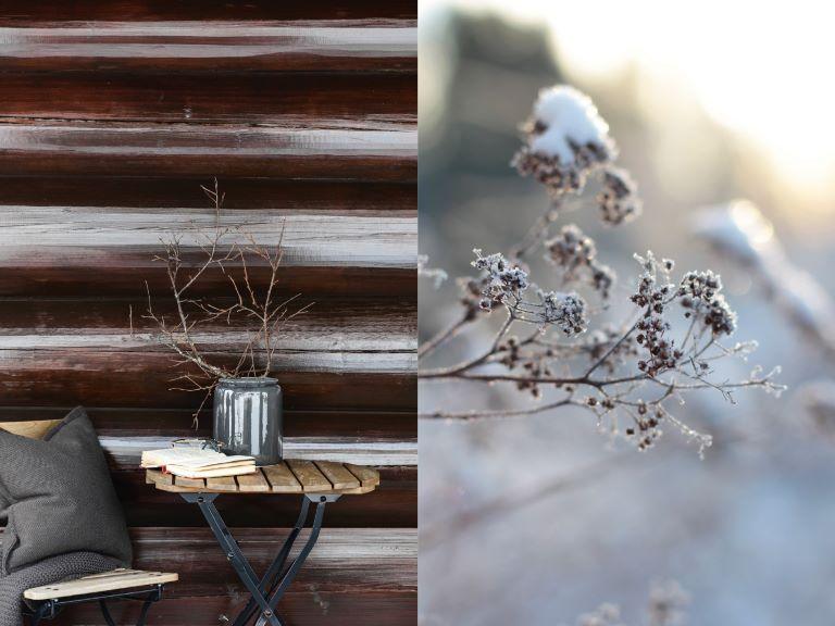 Vinterkos på hytta